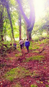 children runnning in forest